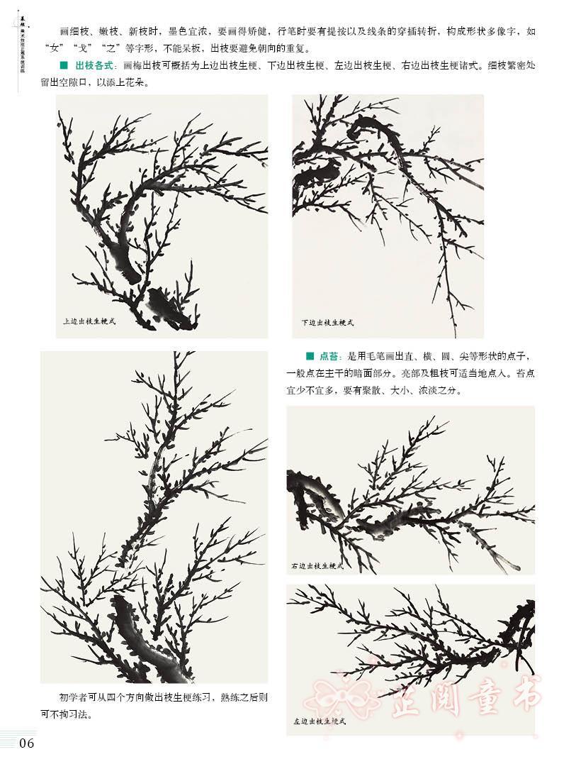 2册 国画起步系列 国画花鸟 国画山水 基础美术技法正规系统训练 初学图片