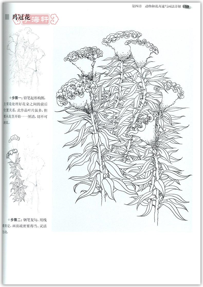 学海轩风景速写梅磊素描书入门基础教程美术高考自学教材工具