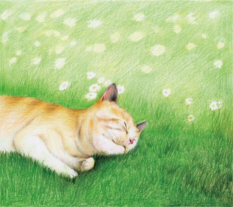 彩铅风景树林花朵