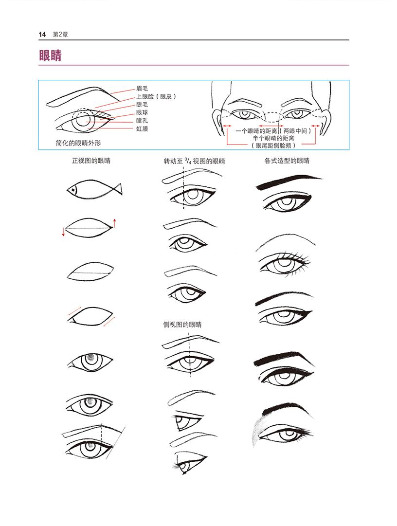 服装设计师的速成手册(修订版)--时装画的手绘表现技法 [美]阿伦